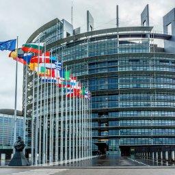 Wróżenie z fusów, czyli co wiemy przed eurowyborami