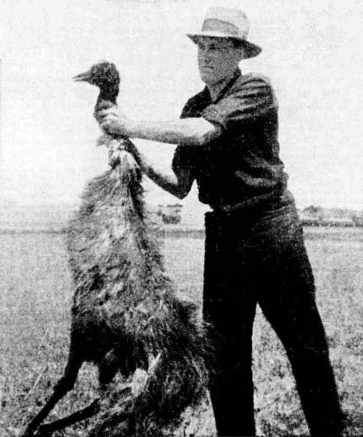 https://en.wikipedia.org/wiki/Emu_War
