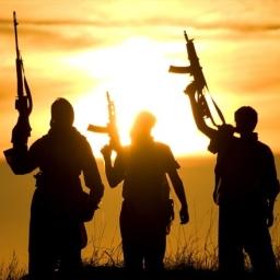 Rola kobiet w organizacjach terrorystycznych